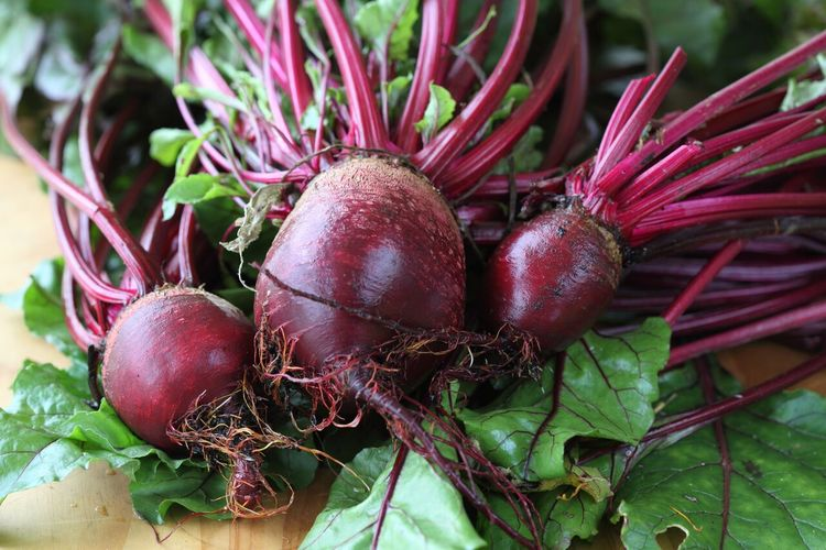 Blog_primary_beetroots 01_preview